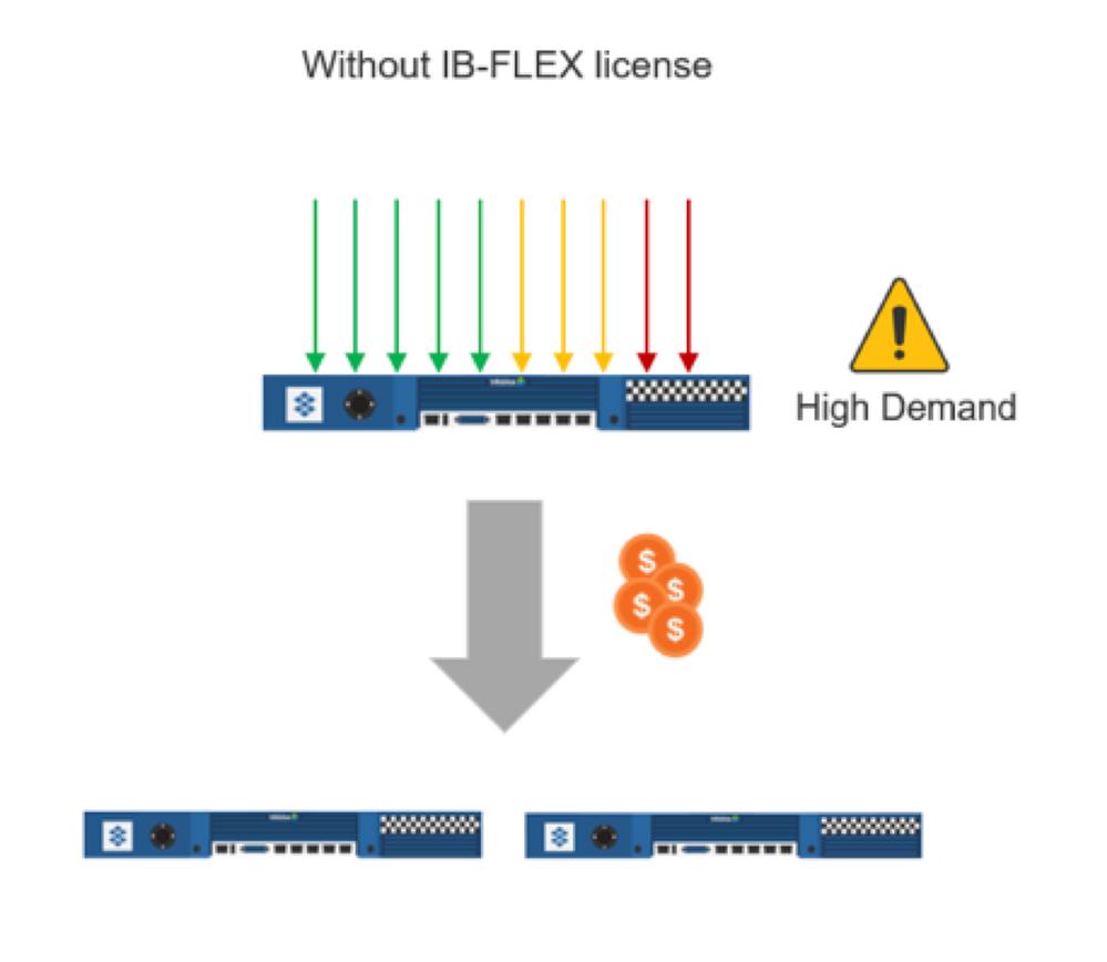 IB-FLEX pic1.png
