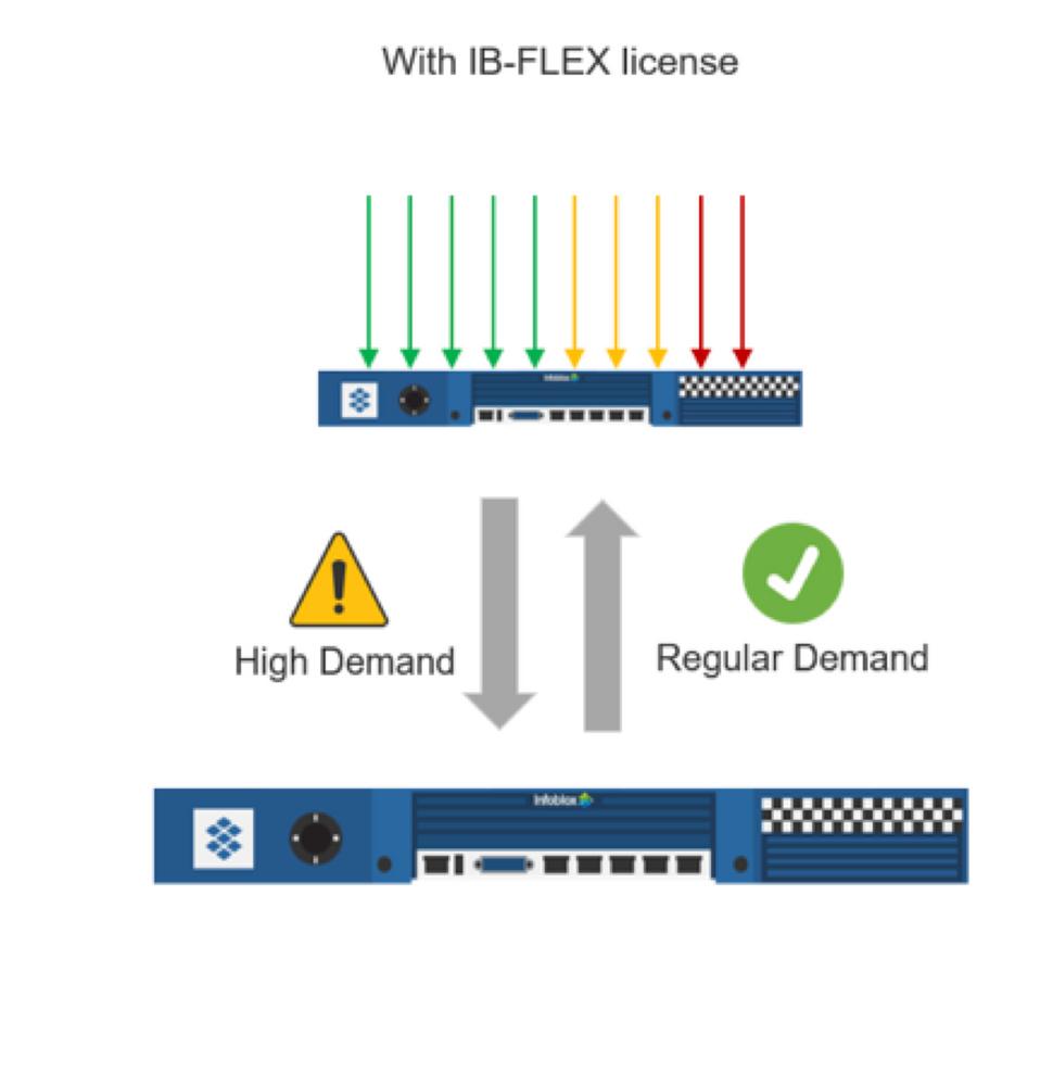 IB-FLEX Pic2.png